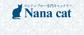 ロシアンブルー専門キャッテリー Nana cat